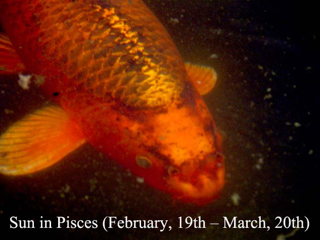 Sun in Pisces (February, 19th – March, 20th): empathy and sensitivity