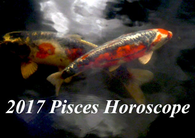 2017 Pisces Horoscope: Money, Career and Business