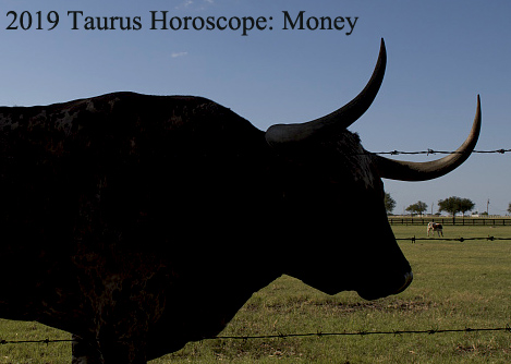 2019 taurus horoscope money