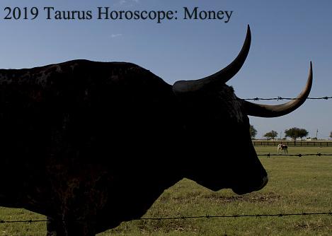 2019 taurus horoscope money