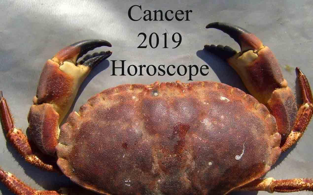 cancer horoscope 2019 money