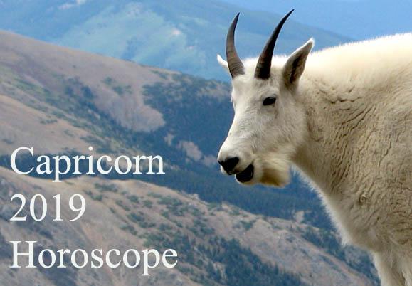capricorn 2019 horoscope