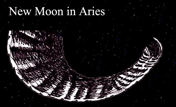 March New Moon in Aries: Something New in My Life
