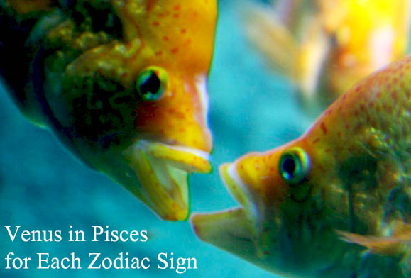 venus in pisces for each zodiac sign