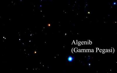 algenib fixed star gamma pegasi