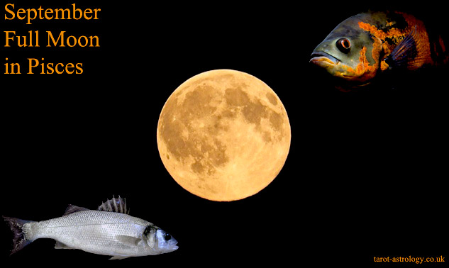September Full Moon in Pisces: Wild Imagination and Compassion