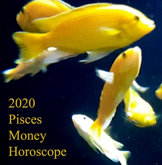2020 Pisces Horoscope: Money and Career