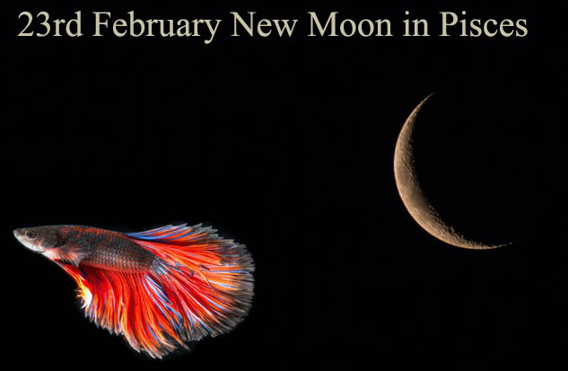 23rd February New Moon in Pisces: Imagine!