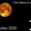 full moon in gemini november 2020